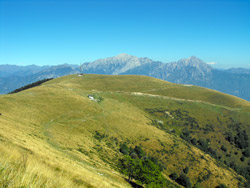 Alpe di Terrabiotta (1430 m) | Hiking a loop around Monte San Primo